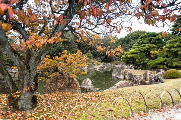 Kioto-11