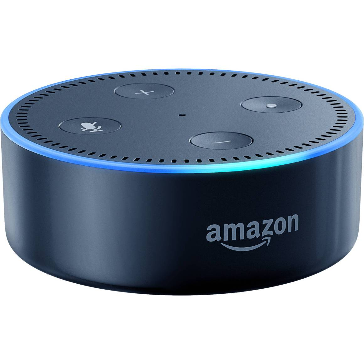 How can the Amazon Echo Dot assist disabled people?