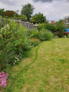 a garden border that cost less than £30