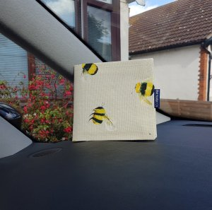 Busy Bees Blue Badge Holder