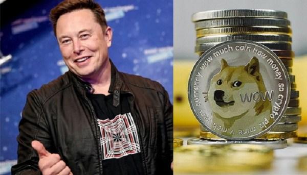 تعدين الدوجكوين Dogecoin