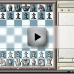 Fischer - Fine Satranç Maçı