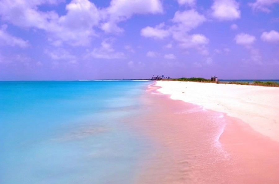 Pink Sands Beach, Harbour Island