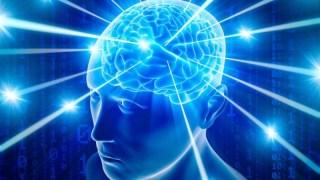 Rahasia Otak Manusia yang Masih Belum Terpecahkan Oleh Para Ilmuwan