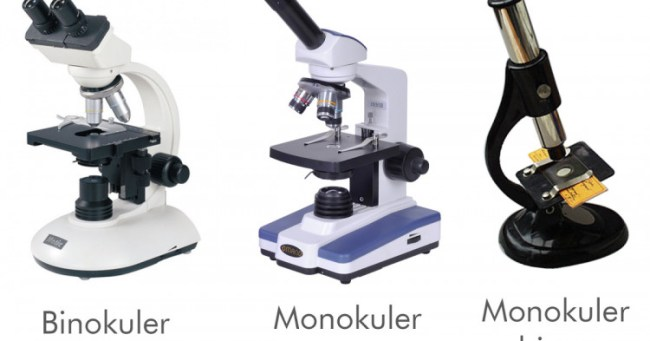 jenis mikroskop