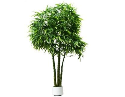 varaikatice bamboo