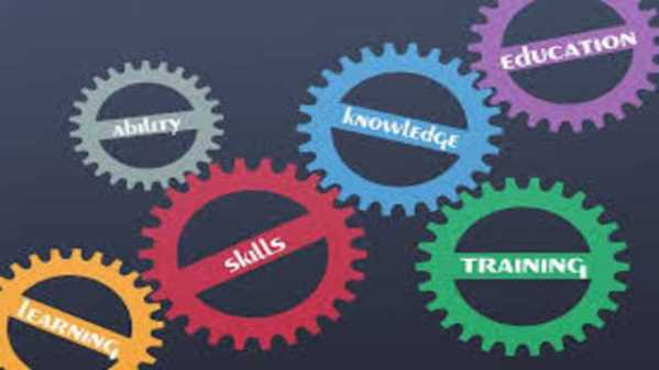 How Students Can Improve Their Skills Through a Mathematics Project?