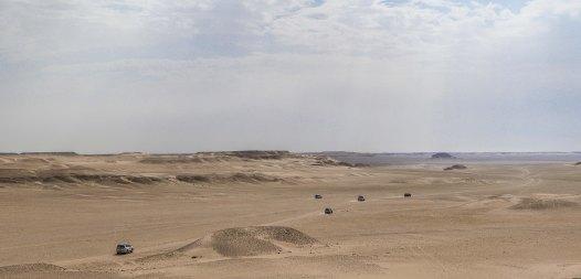 Typical landscape of Al-Ahsa Region with its wonderful shades of limestone (photo: F. Egal)