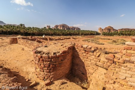 Fortifications of the ancient oasis city of Dedan (photo: Florent Egal)