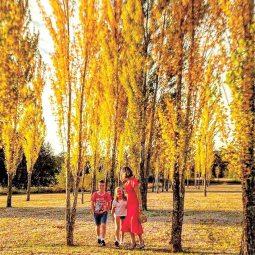 Jodi & Family with the Poplars in Autumn