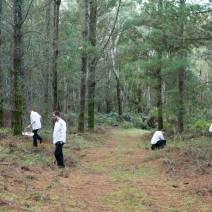 Hunting for Truffles - Sault Restaurant Daylesford
