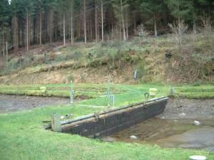 Sanierter Teichdamm