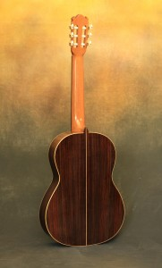 Paul Weaver Classical Guitar