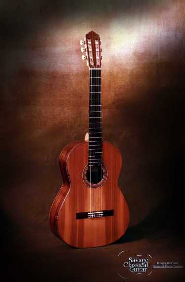 Classical Guitar by Max Sipe