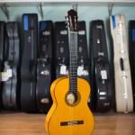 Richard Bruné Flamenco Guitar Model 30F Spruce Cypress