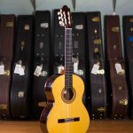 Thomas Malapanis Classical Guitar 2005 Spruce Cocobolo