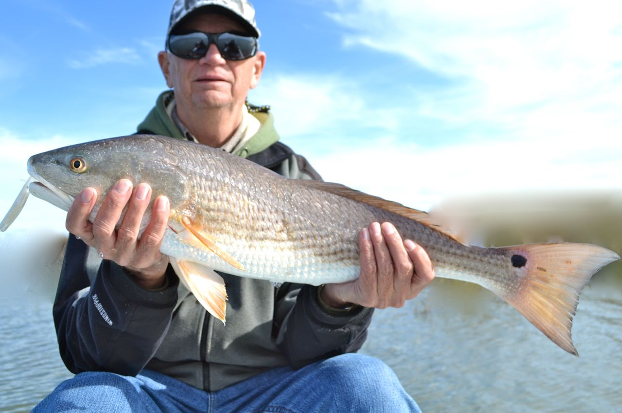 Savannah fly and light tackle for Red fish hilton head