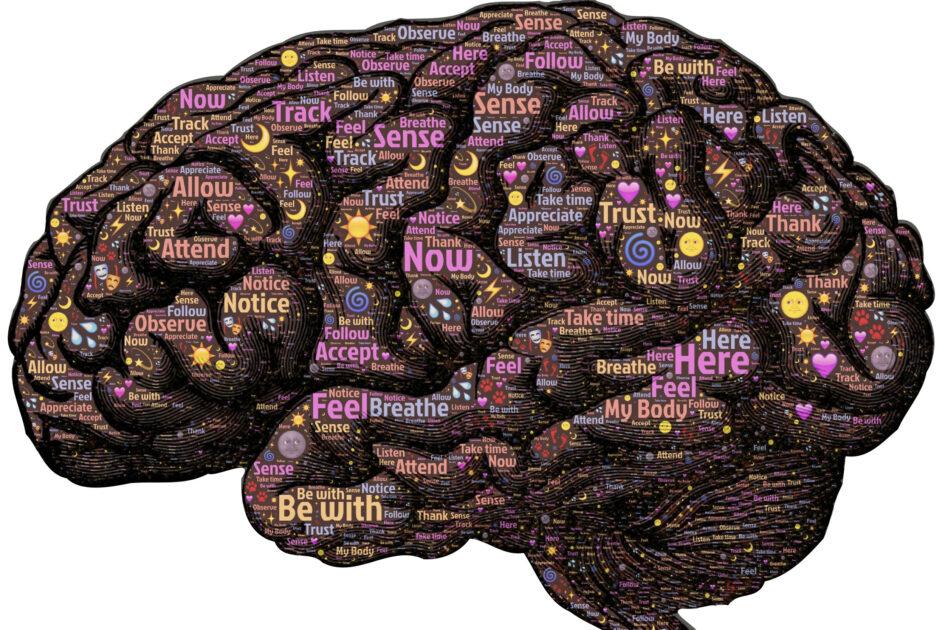 Mindfulness Study 945x630 1