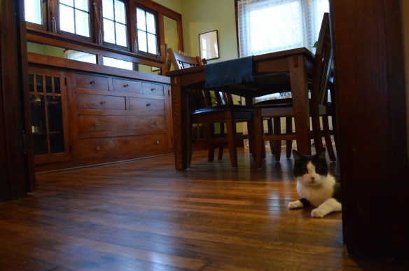 Built-in cabinets in the dining room were among the attractions in the house, along with plenty of space for the couple's three cats. (photo/Cindy Hadish)