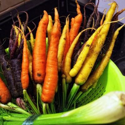 legumes anciens carottes save eat