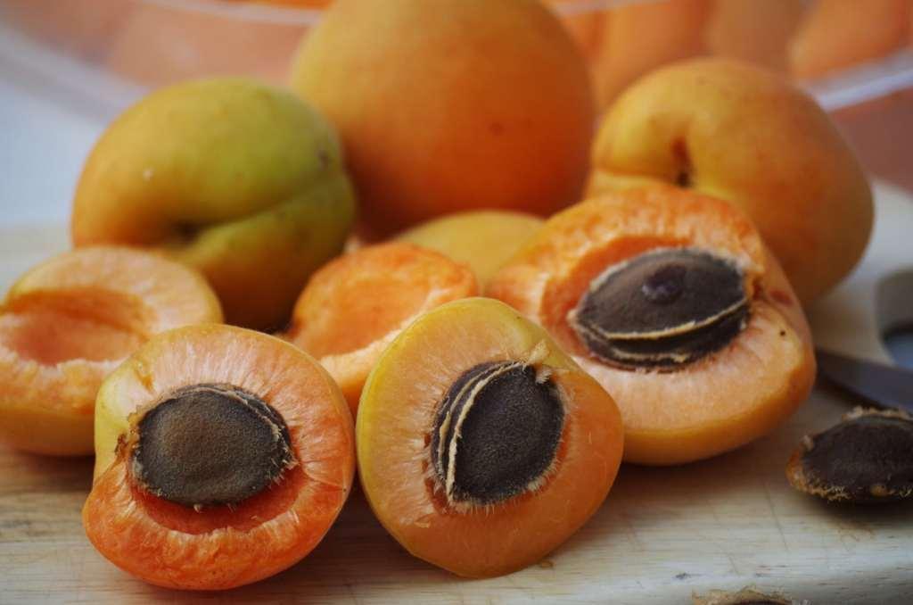 abricots trop mûrs