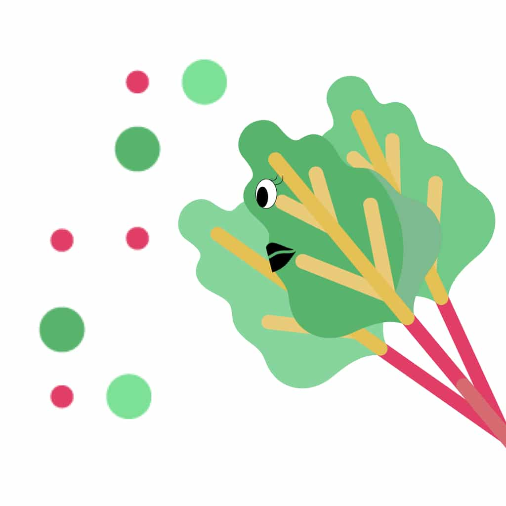 rentree anti-gaspi rhubarbe compote save eat