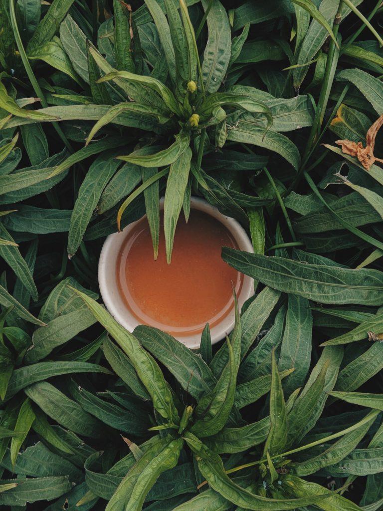 Infusion de feuilles d'artichauts séchées 