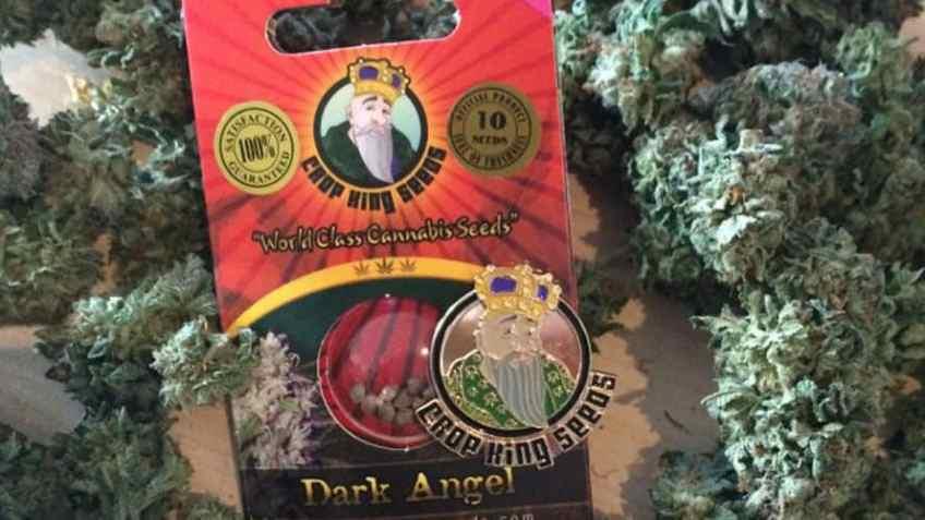 Crop King Seeds Marijuana Coupon - Online Cannabis Coupon Codes - Save On Cannabis
