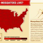 DIY mosquito treatment saves big money