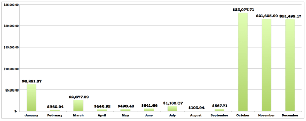 2014-Year-in-Review-Budget-Total-Income