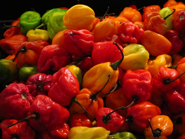 Photograph-Grocery-Vegetables-Food-Shopping-Fruit-Peppers