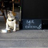 Travel-Photograph-Paris-France-Bar-a-Chiens-Statue-Restaurant