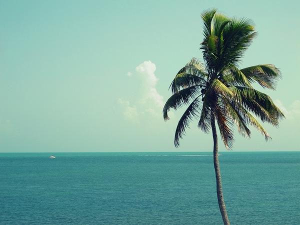 Travel-Photograph-Vacation-Key-West-Miami-Beach-Florida-USA-3