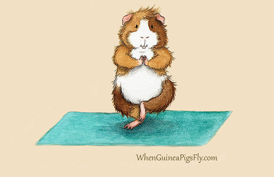 when-guinea-pigs-fly-artwork-etsy-yoga