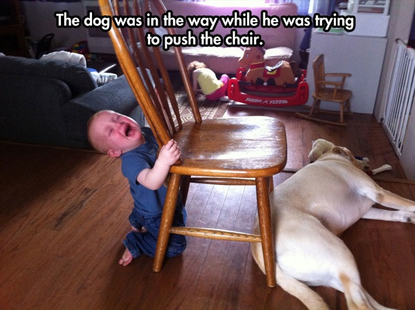 why-my-kid-is-crying-dog-in-the-way