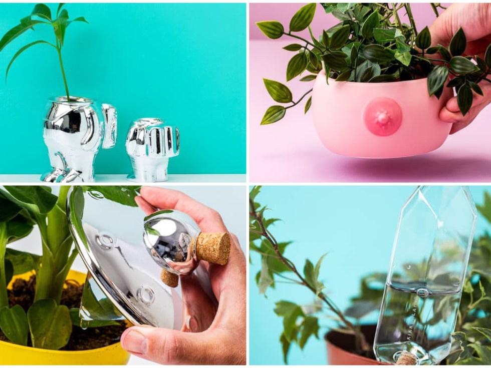 De leukste cadeau's voor plantenliefhebbers
