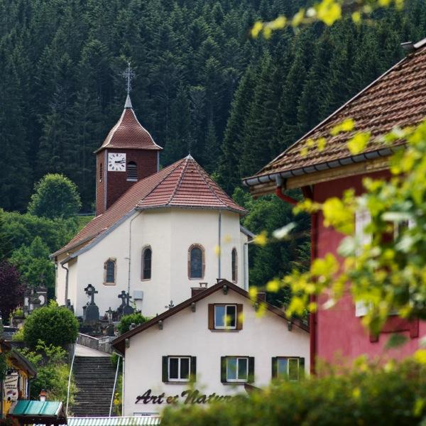 Vosges, la nature en pente douce