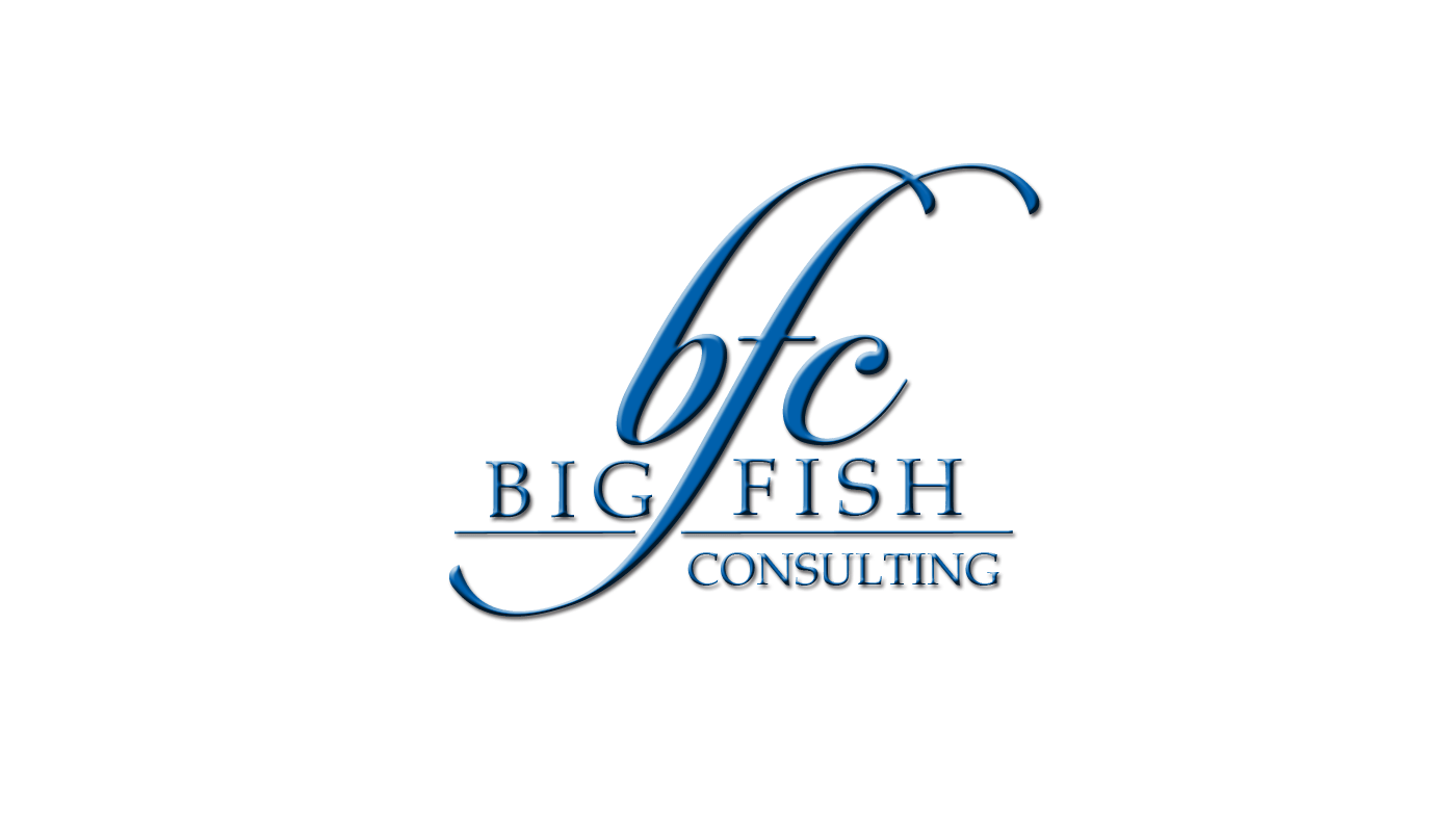 Our Mission Big Fish Consulting