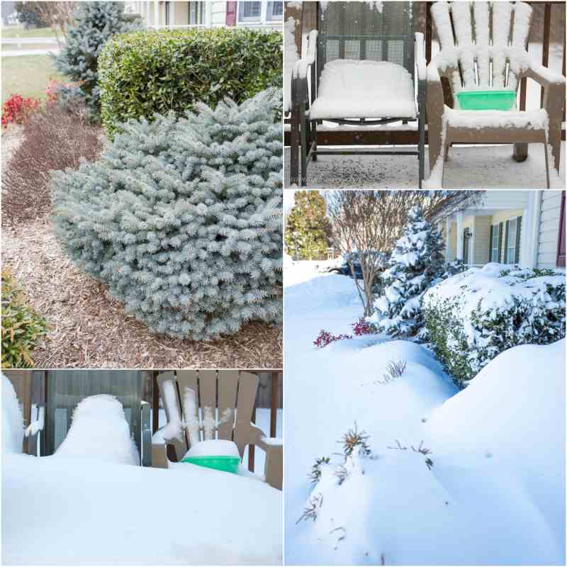 Before and After Blizzard 2016
