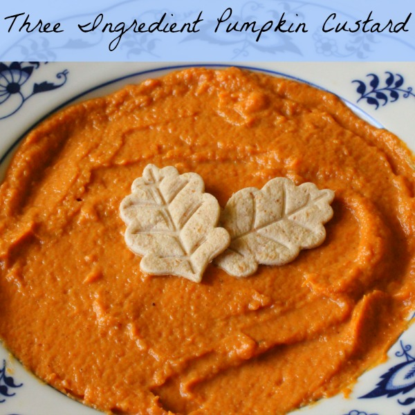 Three Ingredient Pumpkin Custard