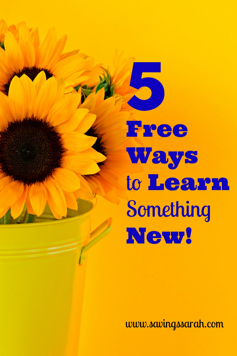5 Free Ways to Learning Something New This Year!