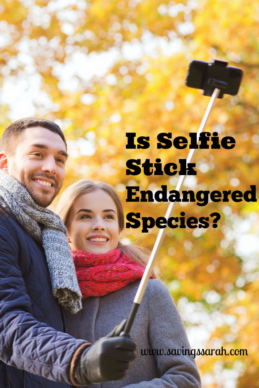 Is Selfie Stick Endangered Species?