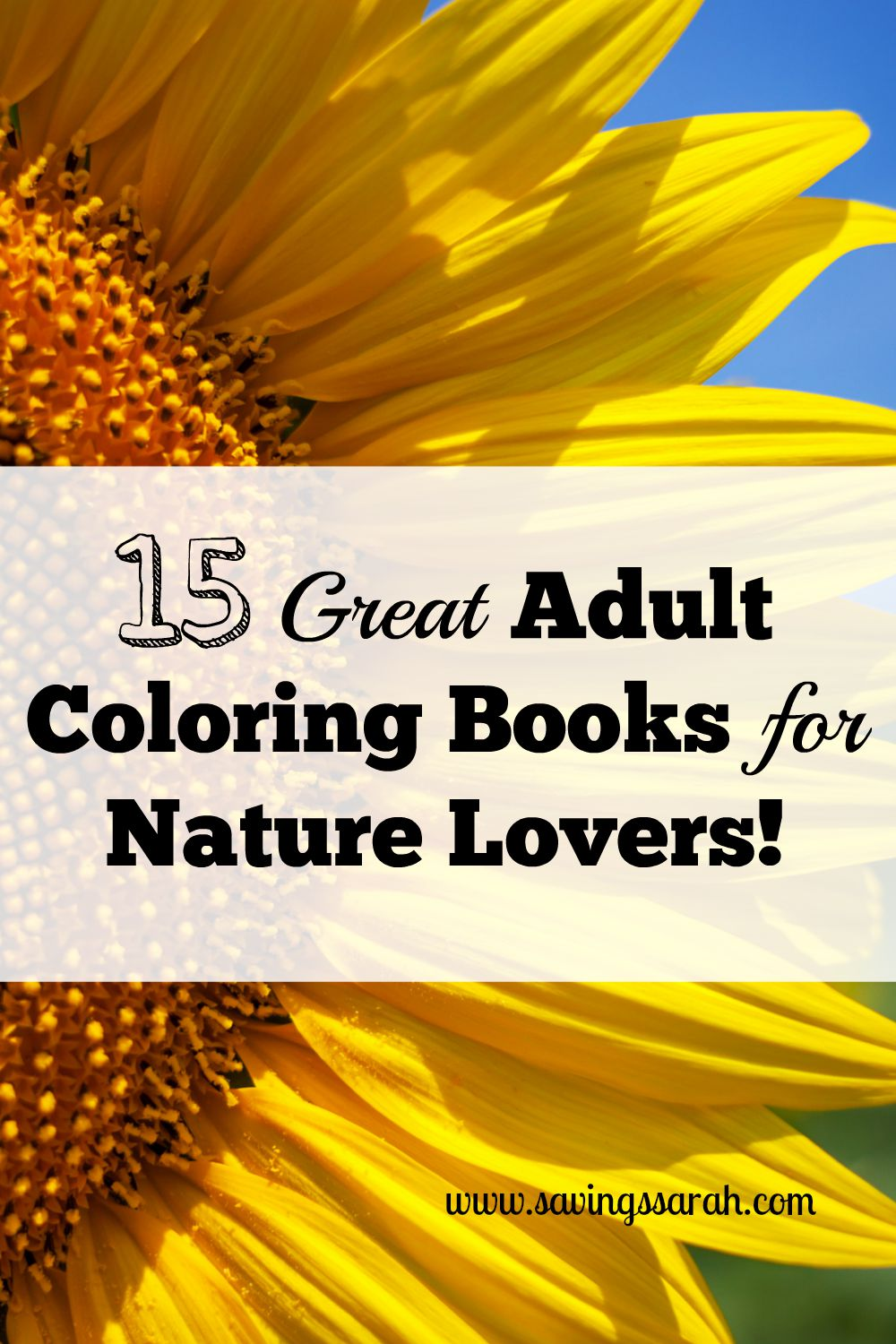 15 Great Adult Coloring Books For Nature Lovers Under 10