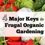 4 Major Keys to Frugal Organic Gardening