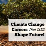 Climate Change Careers That Will Shape The Future