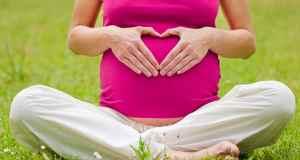 trudnica u prirodi
