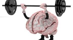 Bolji rad mozga – nutricionistički savjeti