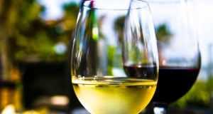 Vino kao začin