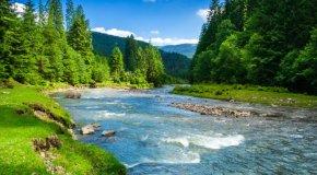 Ekologija i zaštita okoliša