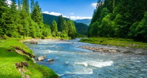 rijeka u prirodi